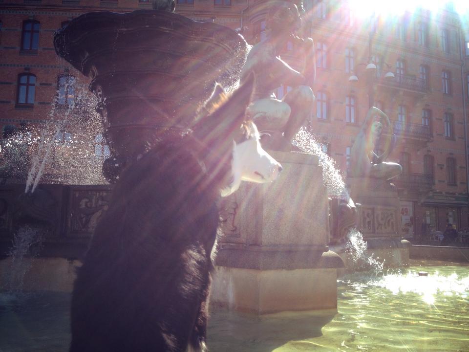 Wilco på Järntorget